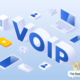 voip facts snippet